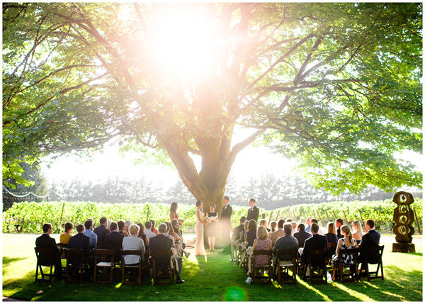 wedding under tree in oregon sunset