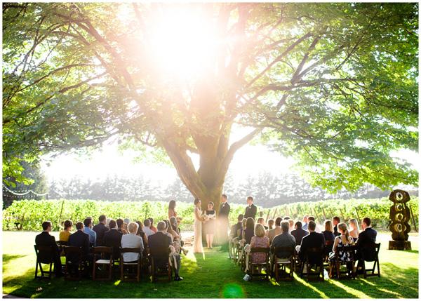 wedding under tree in oregon sunset