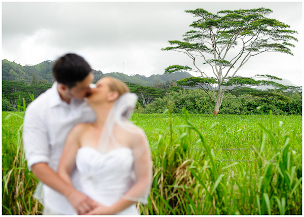 wedding kiss in front of beautiful trees on south shore of kauai