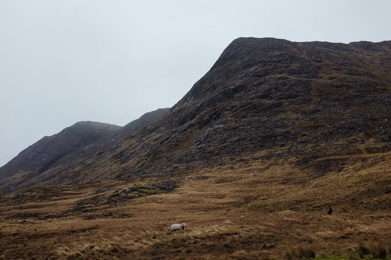 Ireland-Road-Trip-009.jpg