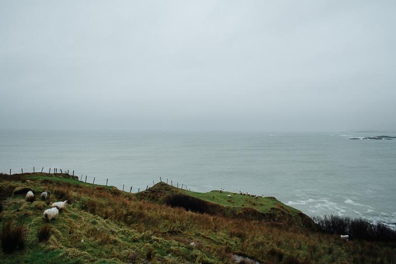 Ireland-Road-Trip-012.jpg