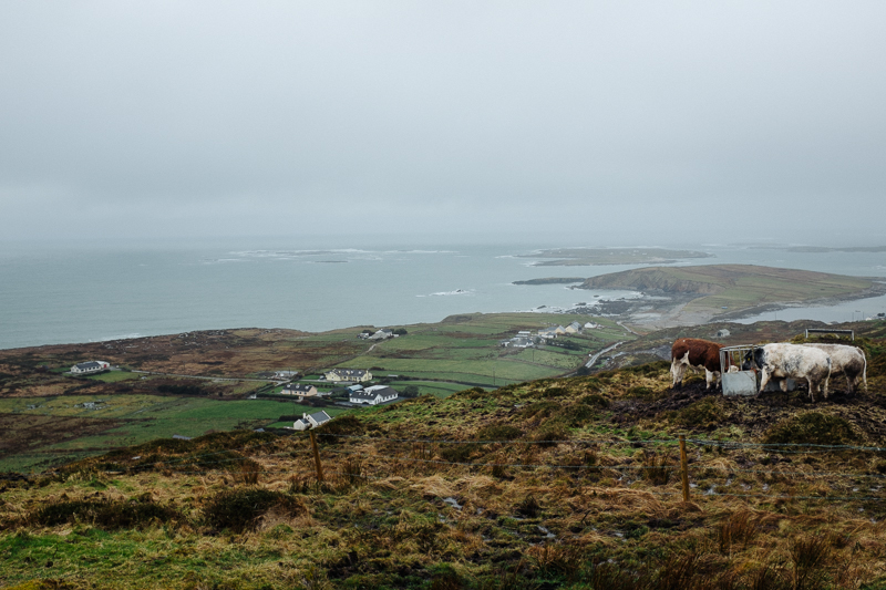 Ireland-Road-Trip-015.jpg