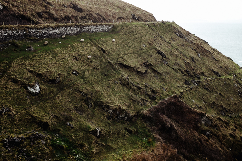 Ireland-Road-Trip-055.jpg