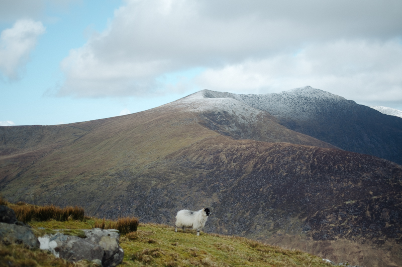 Ireland-Road-Trip-068.jpg