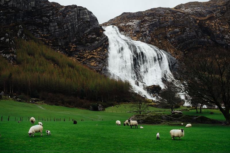 Ireland-Road-Trip-088.jpg
