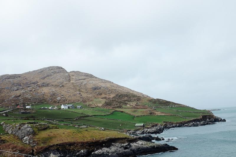 Ireland-Road-Trip-091.jpg