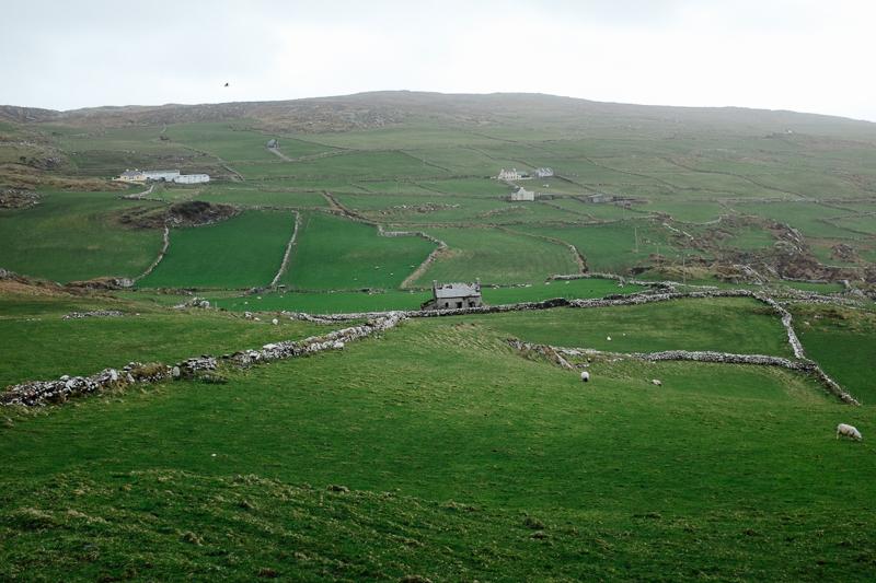 Ireland-Road-Trip-104.jpg