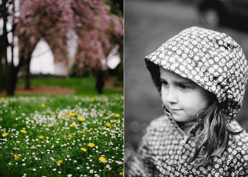 portland-spring-family-072.jpg