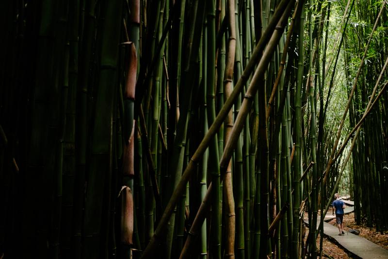 maui-family-fujifilm-096.jpg