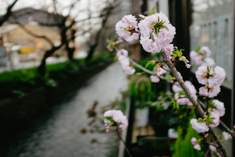 japan-travel-from-oregon-125.jpg