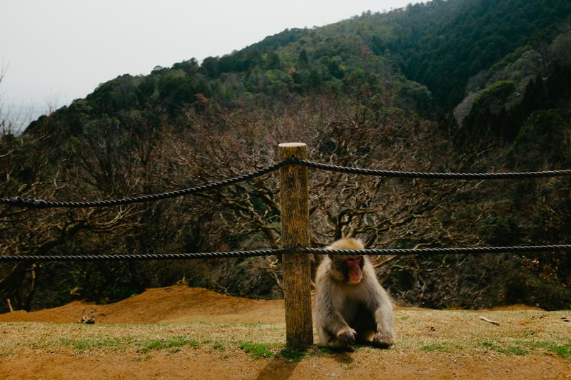japan-travel-from-oregon-157.jpg