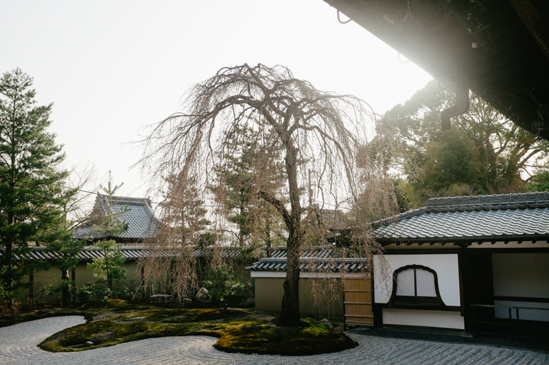 japan-travel-from-oregon-181.jpg
