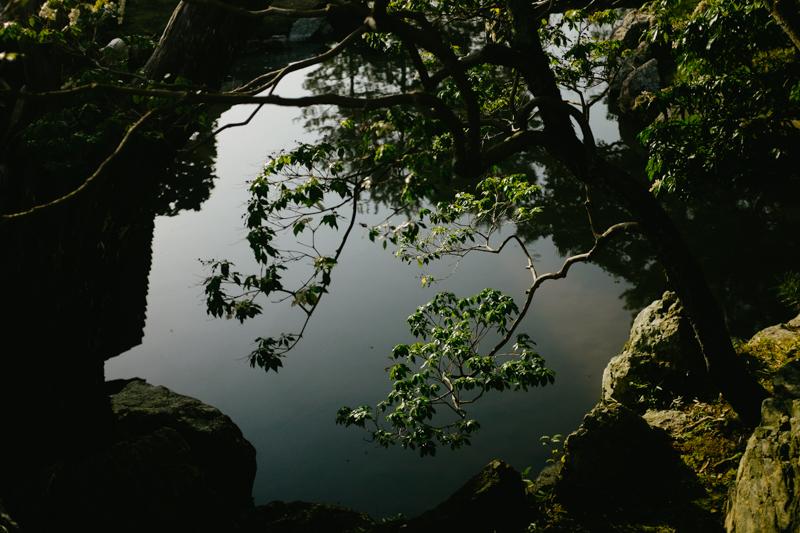 japan-travel-from-oregon-185.jpg