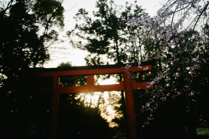 japan-travel-from-oregon-193.jpg