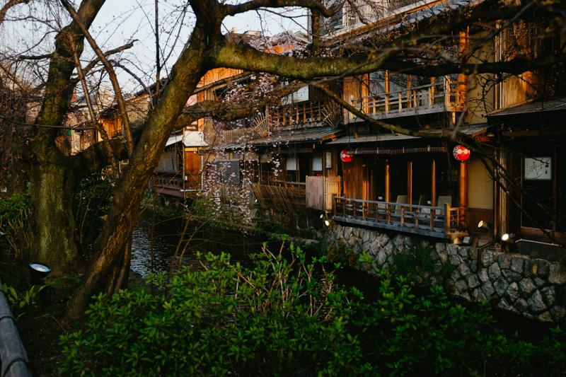 japan-travel-from-oregon-196.jpg