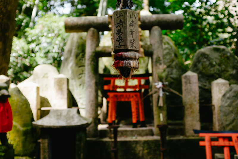 japan-travel-from-oregon-217.jpg
