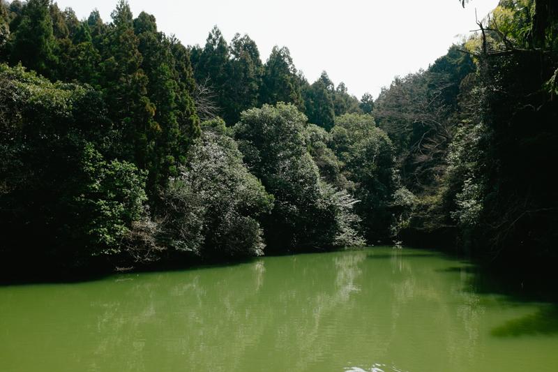 japan-travel-from-oregon-218.jpg