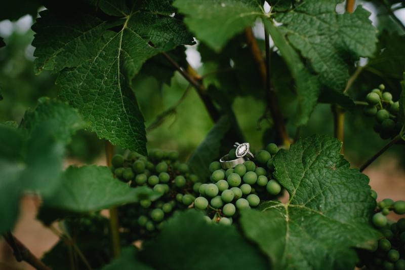 vista-hills-vineyard-wedding-oregon-081.jpg