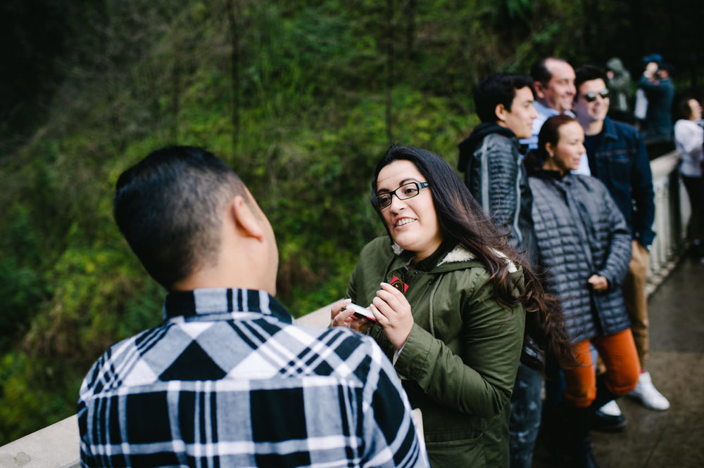 012-multnomah-falls-proposal-engagement-portland.jpg