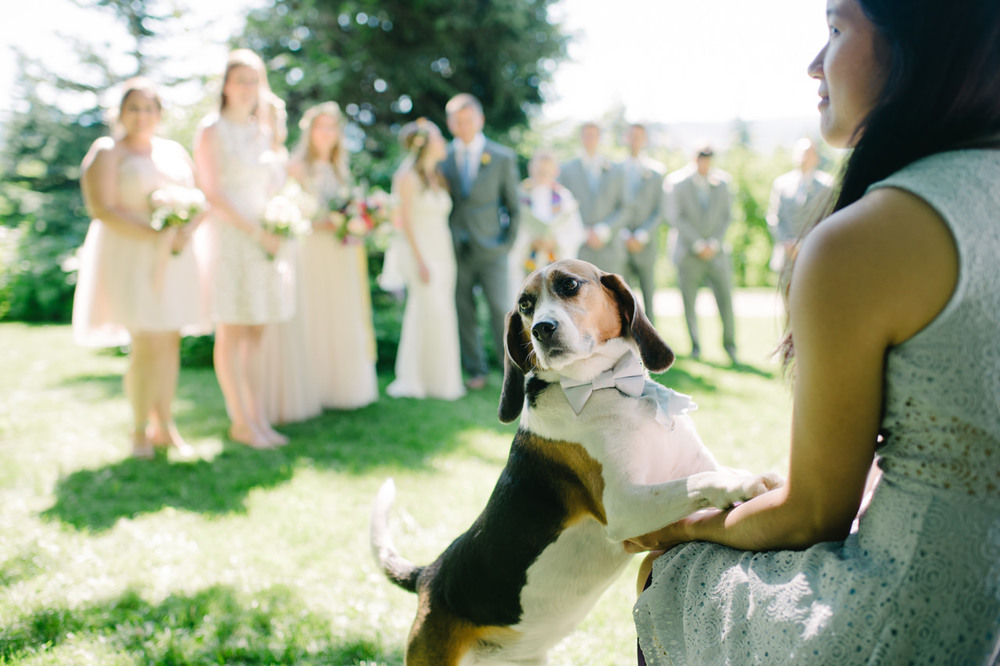 oregon-mt-hood-organic-farms-wedding-067.jpg