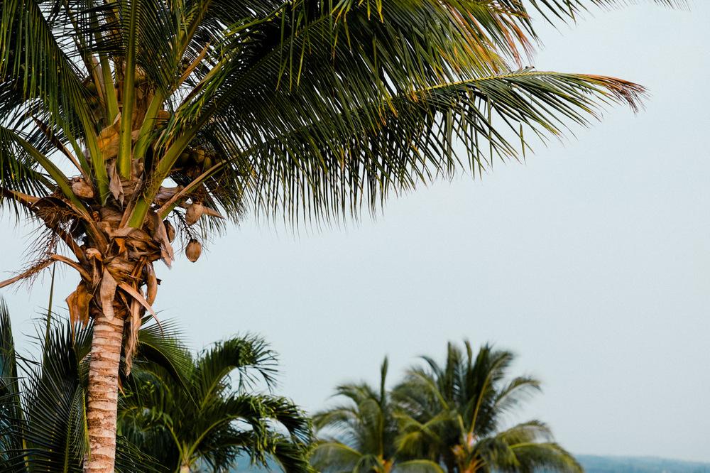 hawaii-island-family-vacation-18.jpg