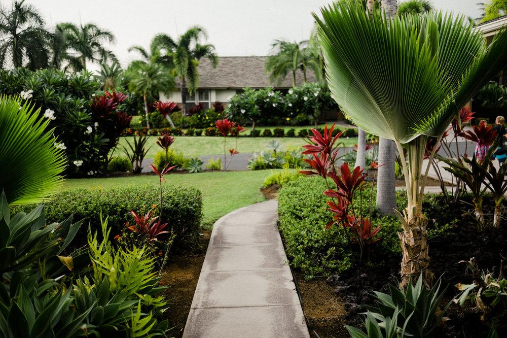 hawaii-island-family-vacation-50.jpg