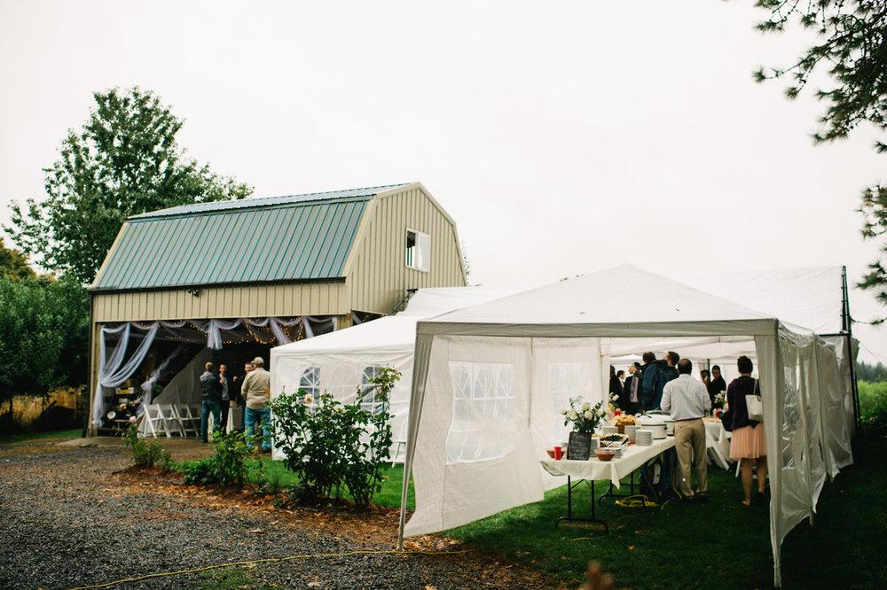 st-marys-cathedral-backyard-wedding-071.jpg