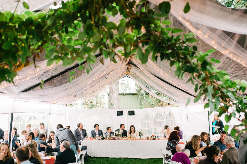 st-marys-cathedral-backyard-wedding-084.jpg