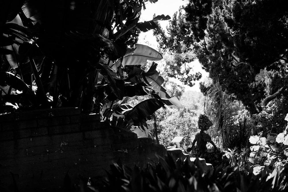 san-diego-botanic-gardens-wedding-044.jpg