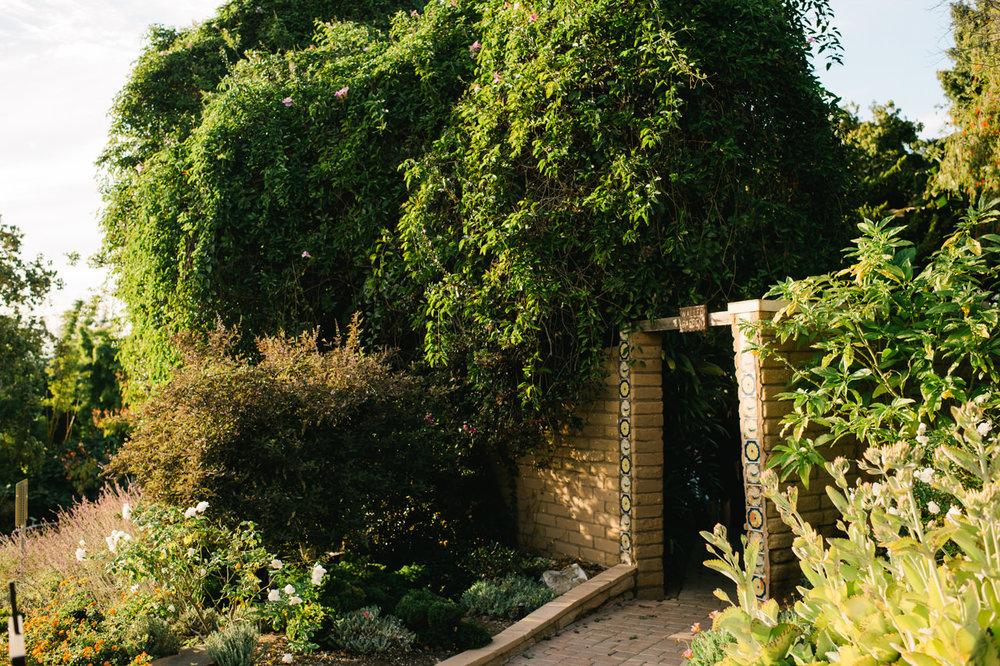 san-diego-botanic-gardens-wedding-064.jpg