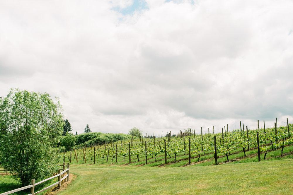 aurora-colony-vineyards-wedding-oregon-001.jpg