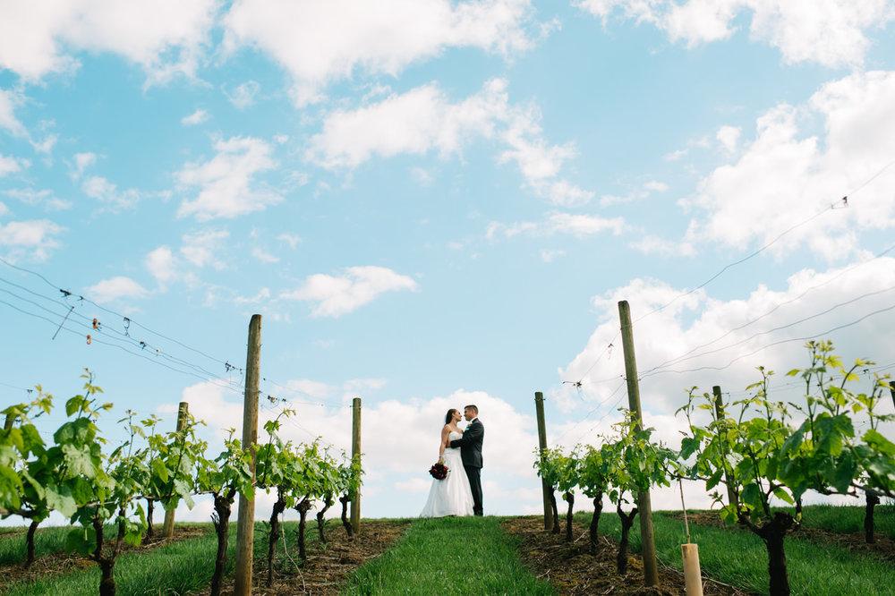 aurora-colony-vineyards-wedding-oregon-056.jpg