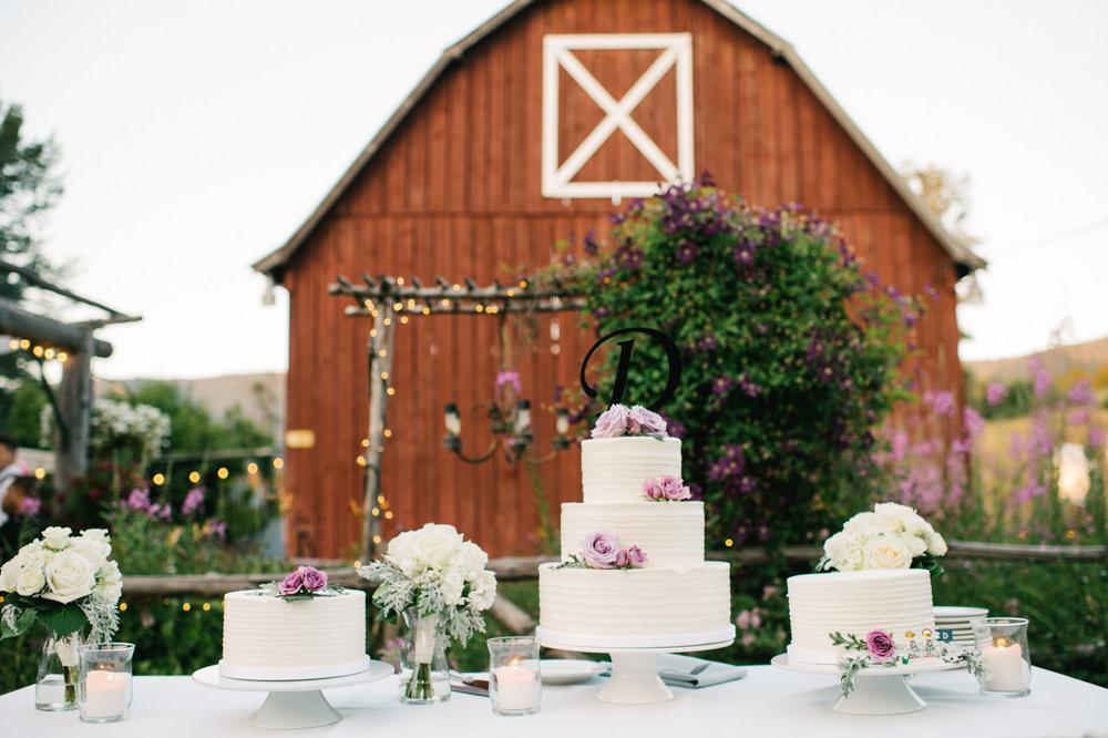 mt-hood-bed-breakfast-wedding-089.jpg