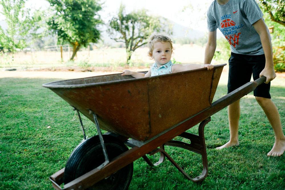 portland-family-summer-photos-188.jpg