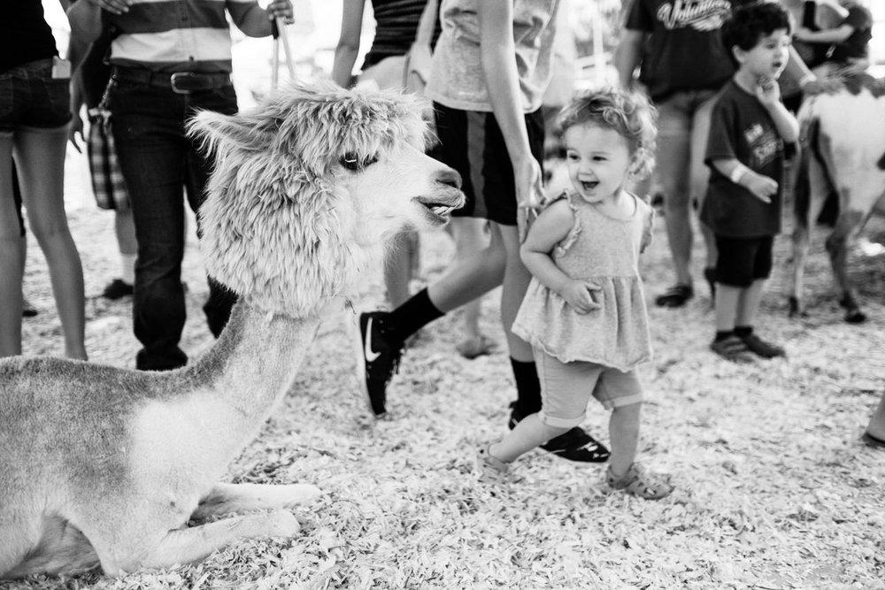 portland-family-summer-photos-251.jpg