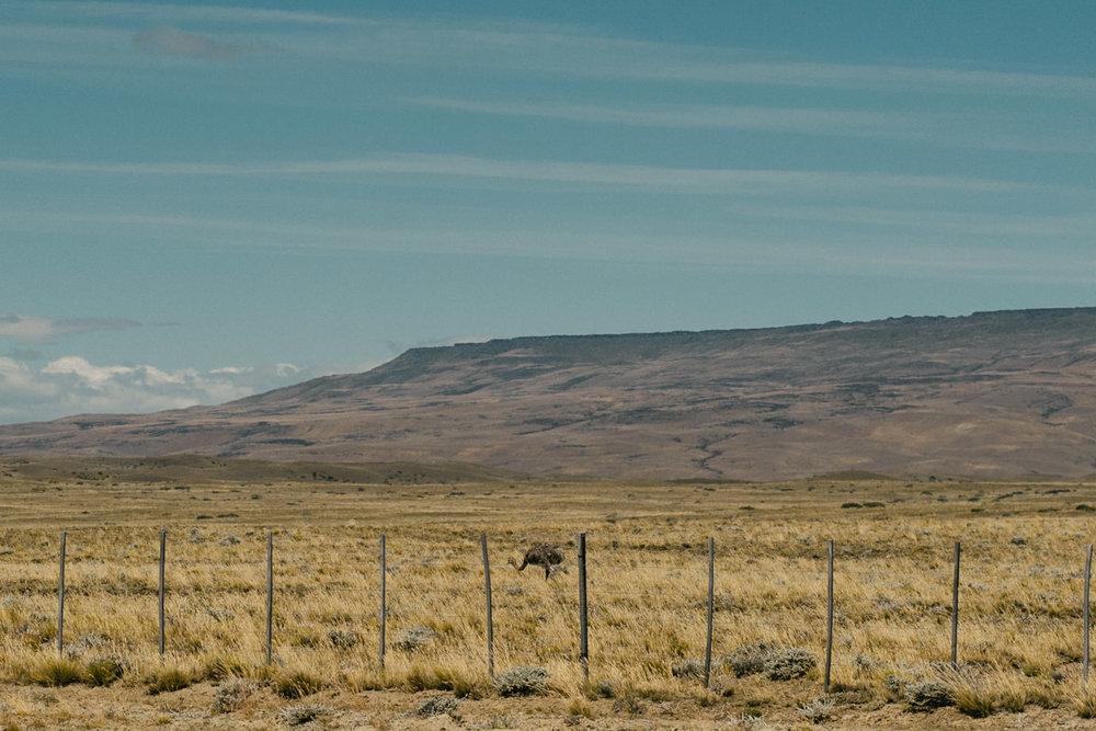 argentina-patagonia-travel-055.jpg