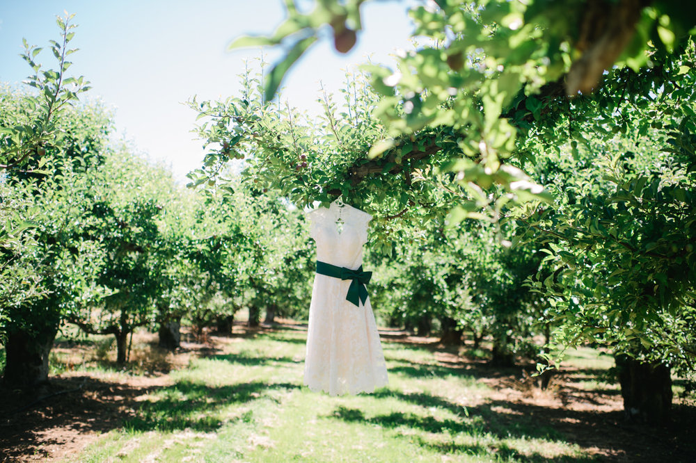 mt-view-orchards-oregon-wedding-001.jpg