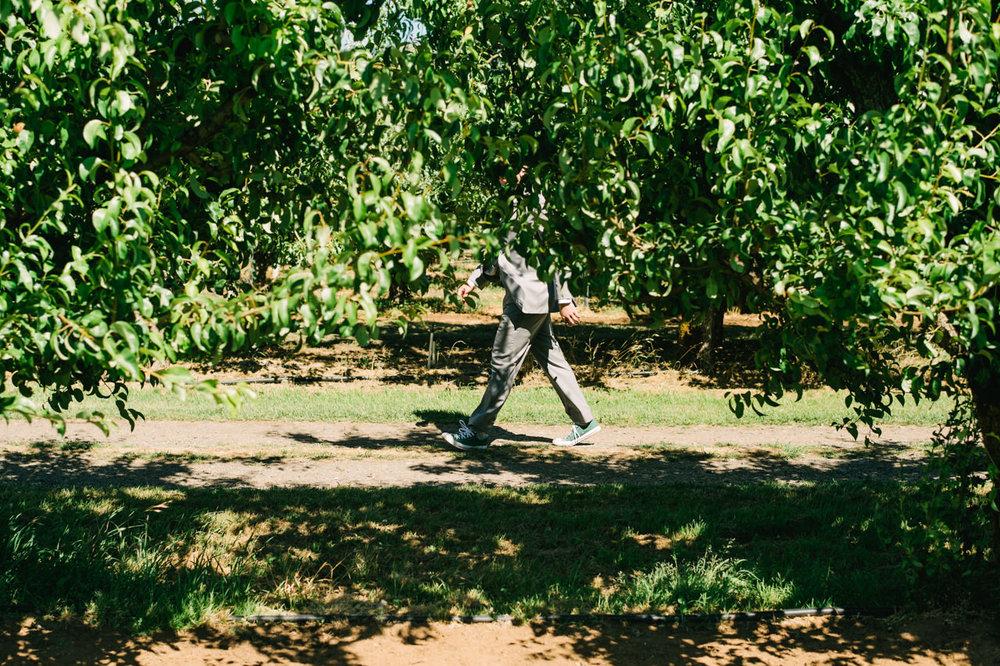 mt-view-orchards-oregon-wedding-044.jpg