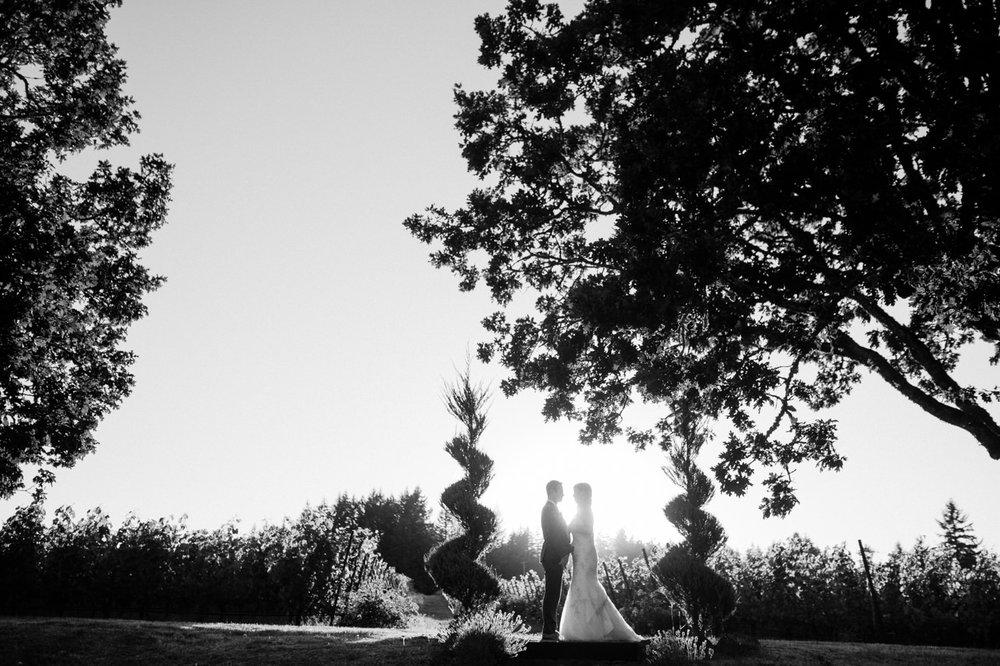 zenith-vineyards-salem-oregon-wedding-077.jpg