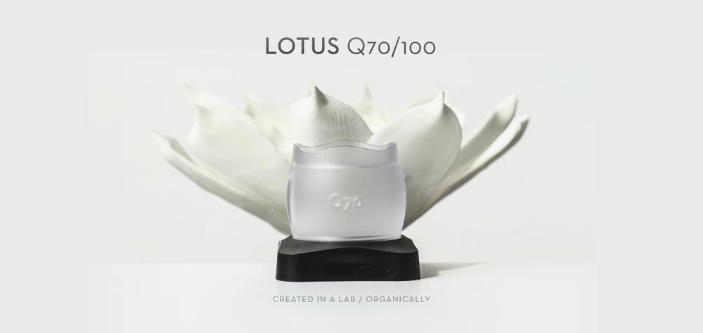 Lotus1@2x.png