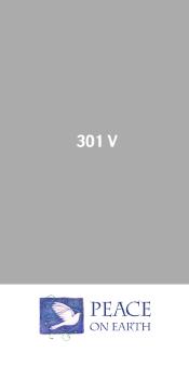 301V.JPG
