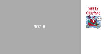 307H.JPG