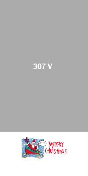 307V.JPG