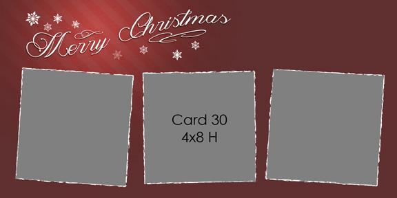 2013_card30-4x8H.jpg