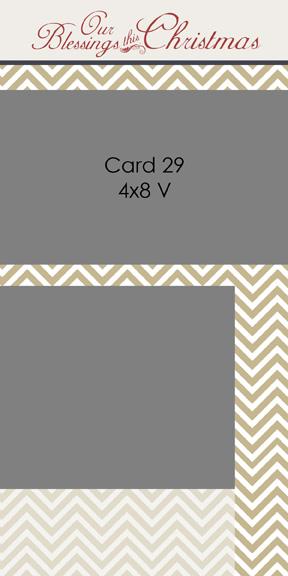 2013_card29-4x8V.jpg