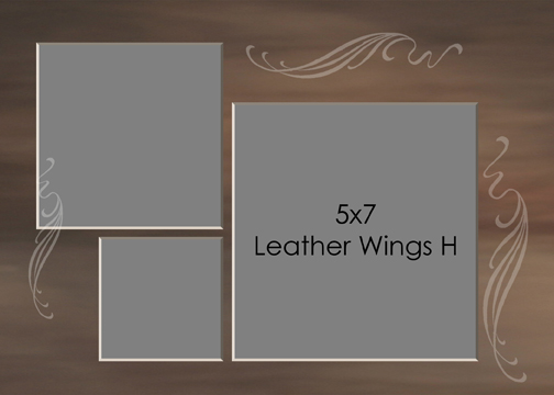 Leather Wings 5x7H.jpg