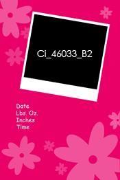 Ci_46033_B2.jpg