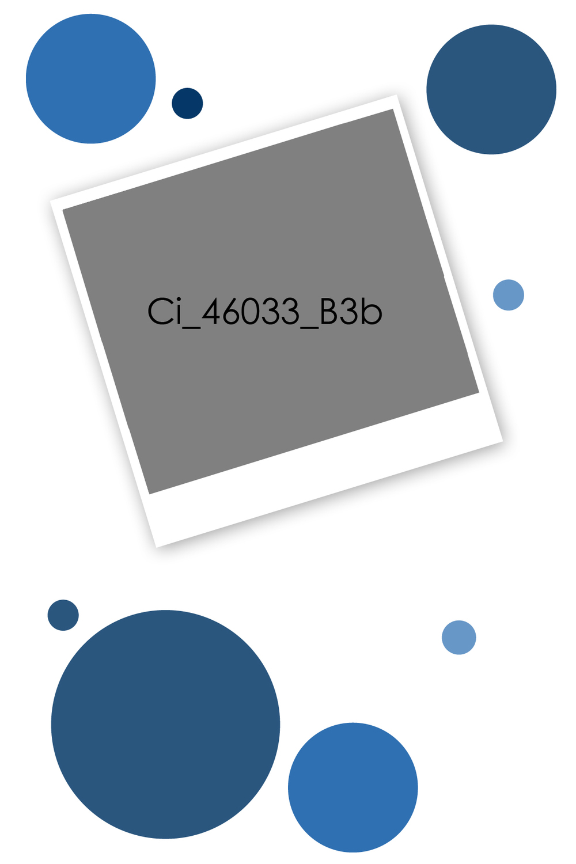 Ci_46033_B3b.jpg