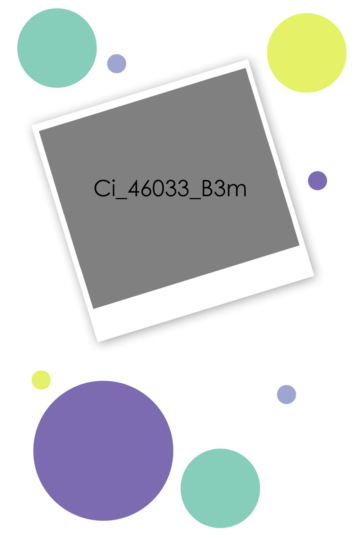 Ci_46033_B3m.jpg