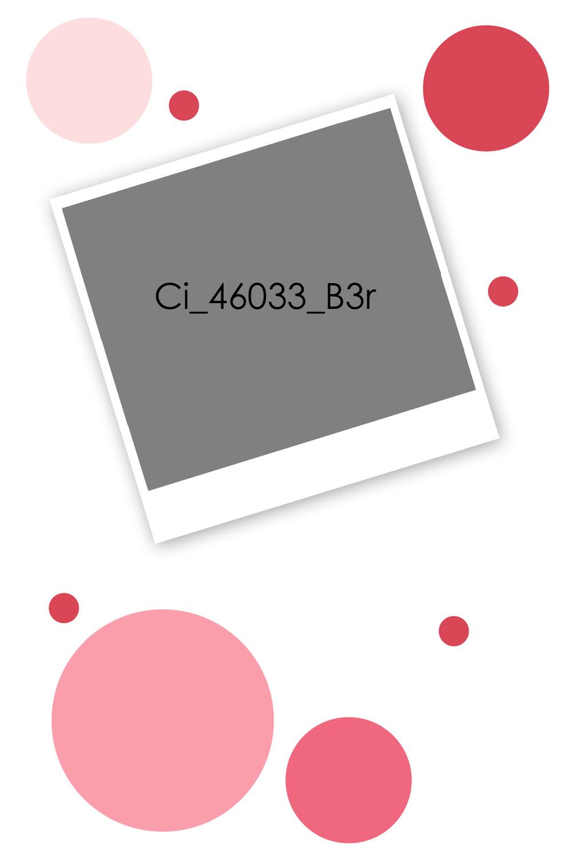 Ci_46033_B3r.jpg